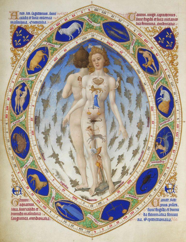L'homme anatomique. Très riches heures du duc de Berry.